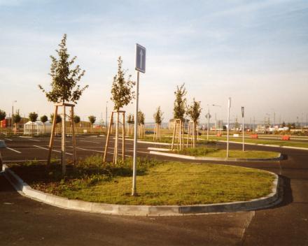 Výsadba stromů u Makro Plzeň