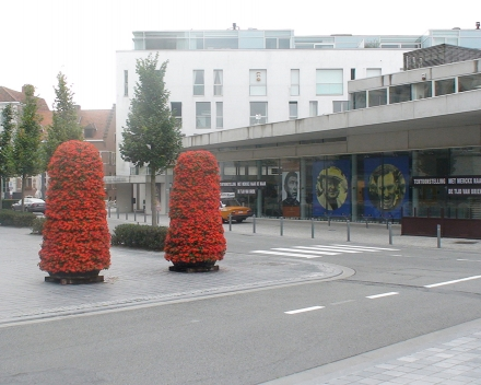 TerraCottem Universal v kvetinových vežiach, Minderbroederplein, Oudenaarde, Belgicko.
