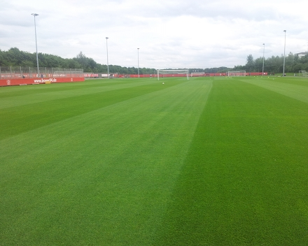 TerraCottem Turf application at Bayer Leverkusen, Germany - training grounds (1 year after application).
