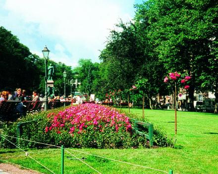 TerraCottem Universal in bloembedden, Esplanadi Park, Helsinki, Finland.