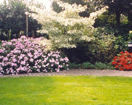 TerraCottem Universal in bloembedden, Bocholt, Duitsland.