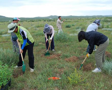 Ekologické zalesňovanie s TerraCottem Univerzal, Mongolsko.