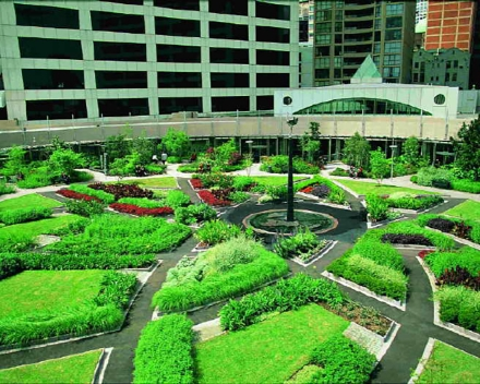 TerraCottem Universal en jardins suspendus, Darling Harbour Park, Sydney, Australie.