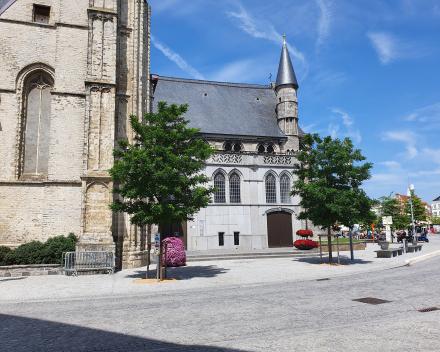 Heraanleg markt Oudenaarde: 3 jaar na aanplant kleuren de bomen het stadscentrum groen