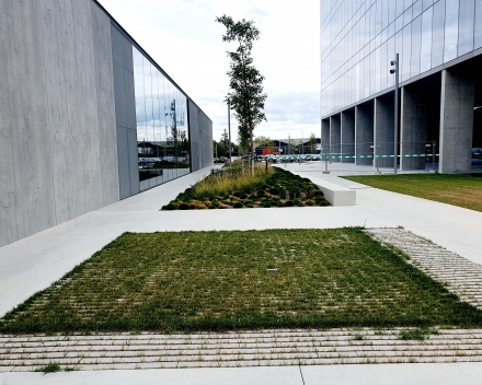 "Construction of ""gravel lawn"" parking with TerraCottem Turf"