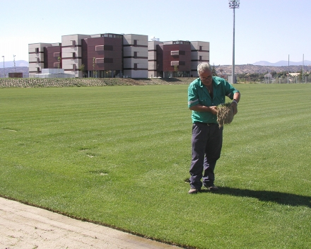 TerraCottem Turf at Ciudad del fútbol de Las Rozas, Madrid, Spanish Football Federation, Spain.