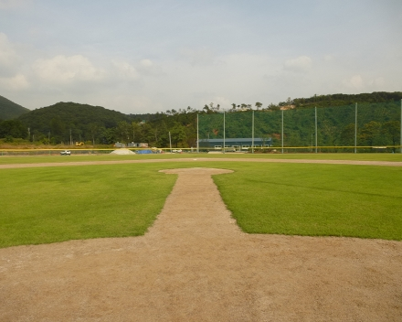 TerraCottem Turf at Paju baseball field, Paju, Gyunggi-Do, South Korea.