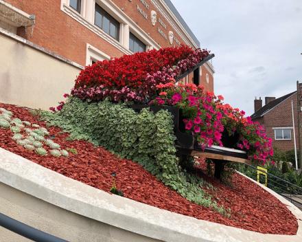 TerraCottem Universal en parterre de fleurs, réalisation de IME à Fourmies