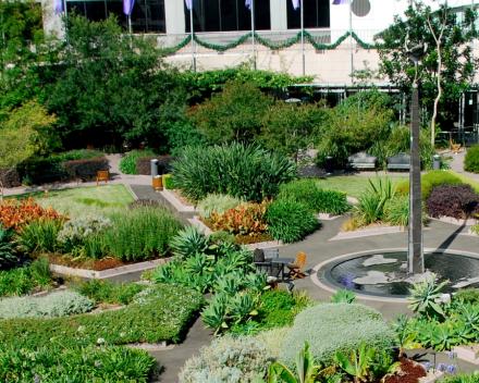 Ground Breaking Garden Provides Oasis of Calm