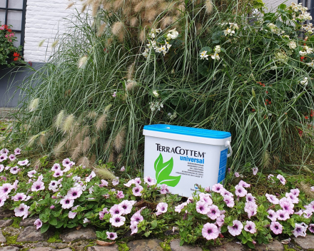 TerraCottem Universal original soil conditioner