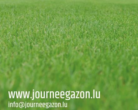 1re édition Journée du Gazon au Luxembourg