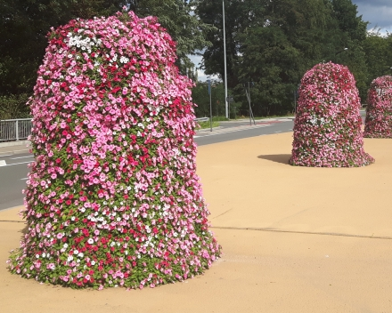 Worldwide Acclaim For Floral Displays