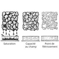 Plus la capacité de rétention en eau d'un amendement du sol  est élevée, plus la plante disposera de cette eau ?