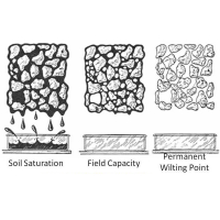 The higher a soil amendment's water retention capacity, the more plant available water?