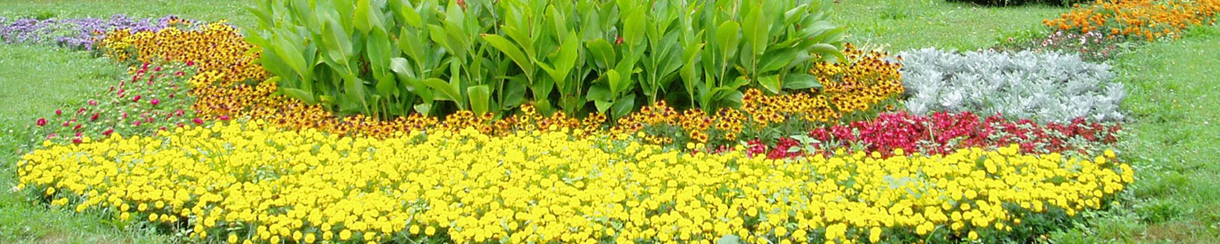 Květinové záhony v Otrokovice