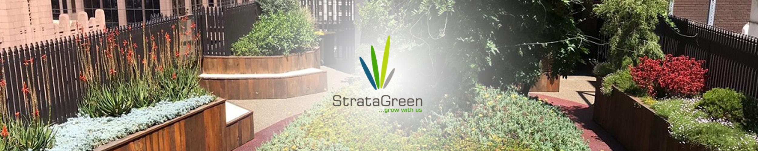 StrataGreen