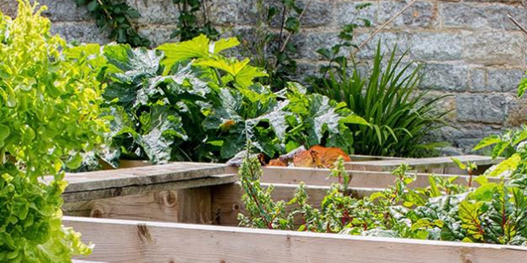 Home Gardeners